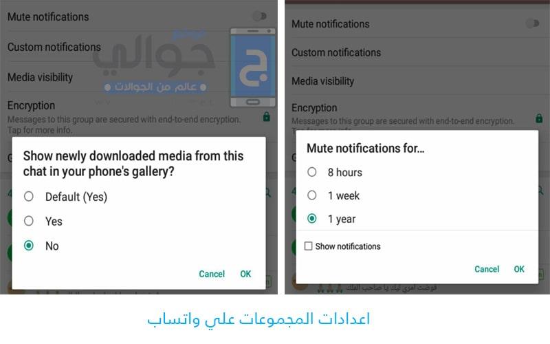 اعدادات المجموعات Whatsapp